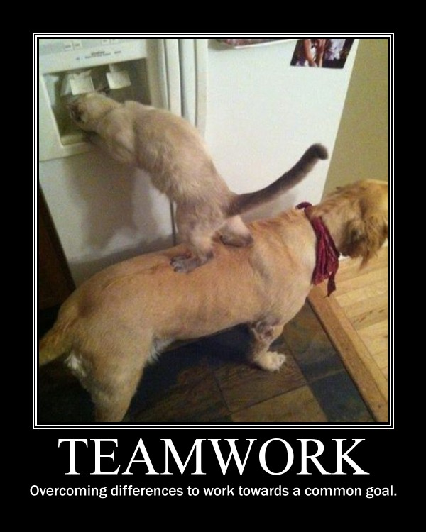 teamwork reflections for meetings